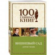 «Вишневый сад» Чехов А.П.