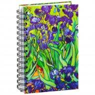 Скетчбук «Ван Гог. Ирисы» 100 страниц, 03591.