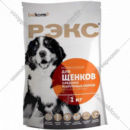 Корм для щенков «Рэкс» средних и крупных пород, 1 кг.
