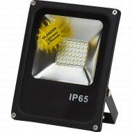 Светодиодный прожектор «Glanzen» FAD-0003-30.