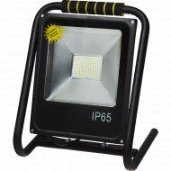 Светодиодный прожектор «Glanzen» FAD-0016-50.