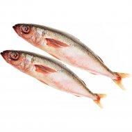 Рыба мороженая «Южная красноглазка» 1 кг., фасовка 0.8-1.3 кг