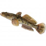 Рыба мороженая «Бычок» обезглавленный, глазированный, 1 кг, фасовка 0.95-1.05 кг