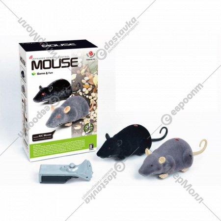 Мышь на дистанционном управлении.