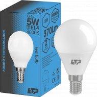 Светодиодная лампа G45, 5W, E14, 4000K.