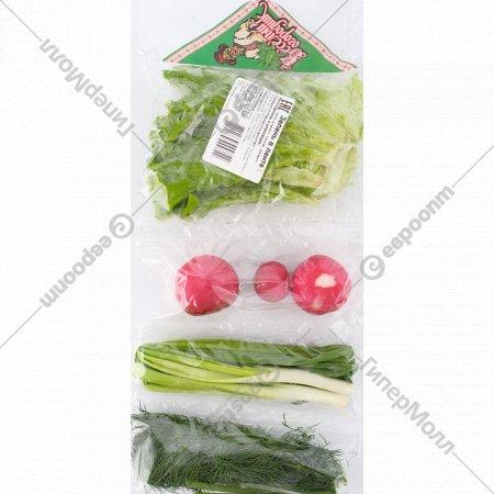 Зелень «Лук, укроп, салат, редис» 140 г.