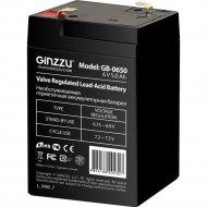 Аккумуляторная батарея «Ginzzu» GB-0650