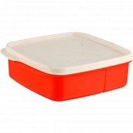Цветной контейнер-менажница «Travel» 0.75 л.