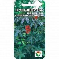 Семена клещевина «Красная» 5 шт.