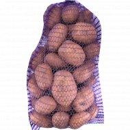 Картофель продовольственный, 1 кг, фасовка 4.5-4.8 кг