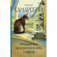 Книга «Невероятные приключения кота Сократа».