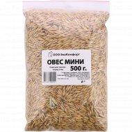 Овес корм для мелких пород птиц «Экокомфорт» мини, 500 г.