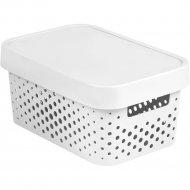 Коробка «Curver» infinity lid dots, 229162, 4,5 л, 270x190x120 мм