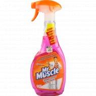 Средство для мытья стекол «Mr Muscle» 500 мл.
