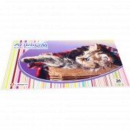 Альбом для рисования «Котёнок в корзине» на склейке, 24 л.