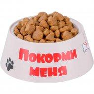 Миска для собак «Дружок» 0.7 л.