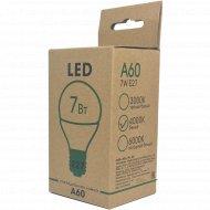 Лампа светодиодная диммируемая «ETP» A60 7W E27 4000K.