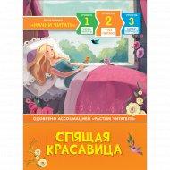 Книга «Спящая красавица».