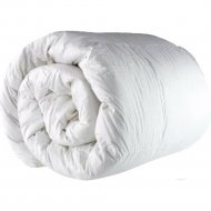 Одеяло «Файбертек» ЛП.2.05, 220х200 см