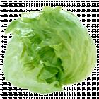 Салат «Айсберг» 1 кг., фасовка 0.55-0.85 кг