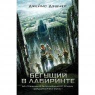 Книга «Бегущий в Лабиринте» Дэшнер Д.