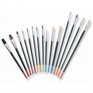 Набор кистей универсальный «Color Expert» 15 шт.