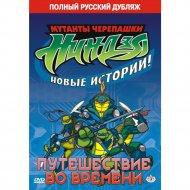 DVD-диск «Черепашки-ниндзя: Путешествие во времени».