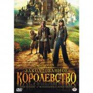 DVD-диск «Заколдованное королевство».