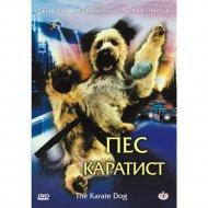 DVD-диск «Пес каратист».