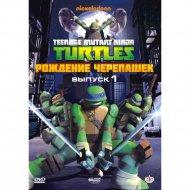 DVD-диск «Черепашки-ниндзя: Выпуск 1.Рождение черепашек».