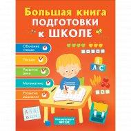 Большая книга подготовки к школе.