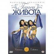 DVD-диск «Танец живота: урок №1 начальный курс».