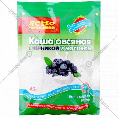 Каша «Ясно солнышко» овсяная с черникой и молоком 45 г.