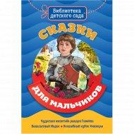 Книга библиотека детского сада «Сказки для мальчиков».