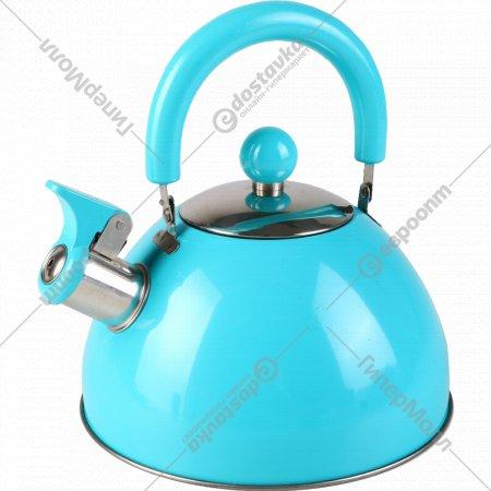 Чайник из нержавеющей стали 2.5 л.