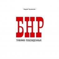 Книга «БНР. Триумф побежденных» Чернякевич А.