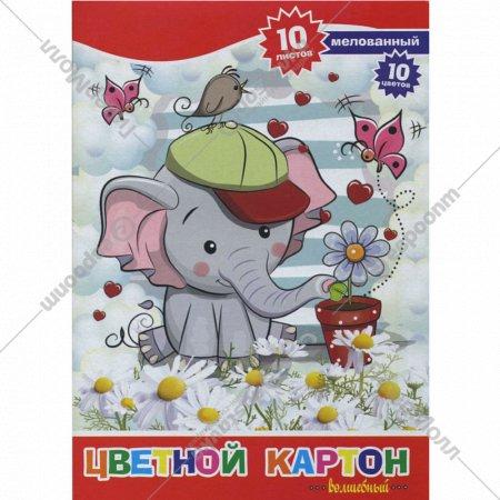 Набор цветного картона «Слоник» 10 цветов, А4, ACC-10/10М-7.