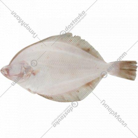 Камбала белобрюхая «Океан в подарок» мороженая, 1 кг., фасовка 1.4-1.7 кг