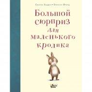 Книга «Большой сюрприз для маленького кролика» Хэддоу С.