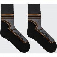 Носки мужские «Термо» модель 100TE-005, 2 пары.