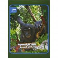 Набор цветного картона «Animal Planet» 10 цветов, А4, AP-CC-10/10-28.