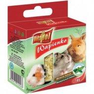 Минеральный камень «Vitapol» для грызунов и кроликов с мятой, 40 г.