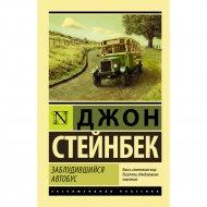 Книга «Заблудившийся автобус».