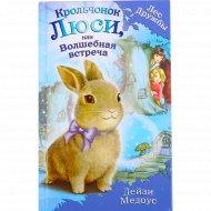 Книга «Крольчонок Люси, или Волшебная встреча» Медоус Д.