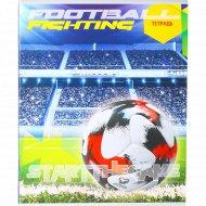 Тетрадь «Футбольный мяч красный» С3619-09, 48 листов.