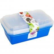 Набор контейнеров «Berossi» Zip, ИК17436000, для заморозки.