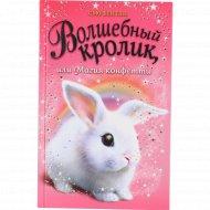 Книга «Волшебный кролик или магия конфетти» С. Бентли.