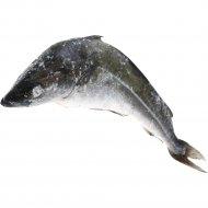 Рыба свежемороженая «Сайда» 1 кг., фасовка 1.1-1.3 кг