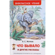 Книга «Что бывало» и другие рассказы