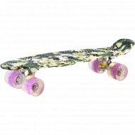 Скейт пластмассовый, SC2406.